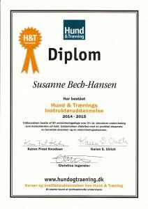 Diplom HogT
